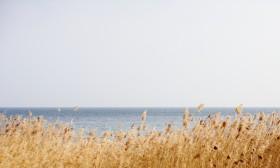 La mer à nos portes – Le lac Léman